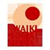 Waiki Social Media: Planificación Estratégica de Social Media y Gestión de Redes Sociales en Valencia